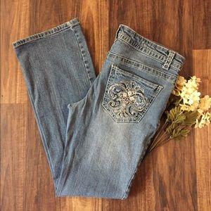 🦋 Paisley Sky Ladies Jeans Sz 10